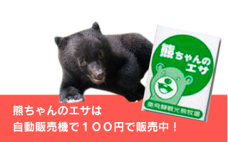 熊ちゃんのエサは 自動販売機で100円で販売中!